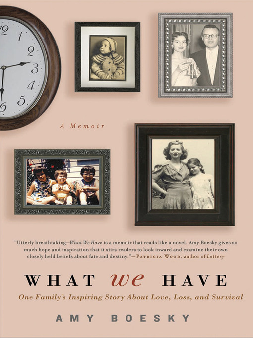 Title details for What We Have by Amy Boesky - Available