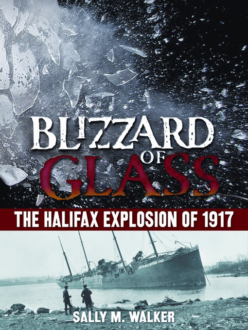 Title details for Blizzard of Glass by Sally M. Walker - Available