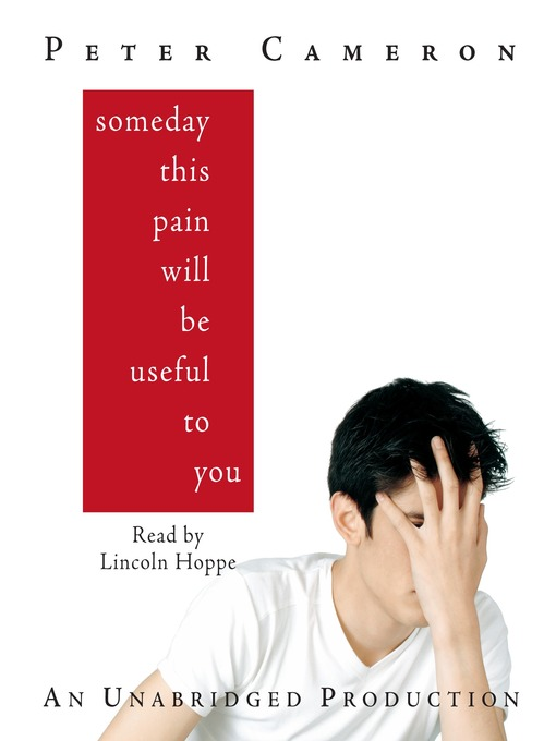 Title details for Someday This Pain Will Be Useful to You by Peter Cameron - Wait list