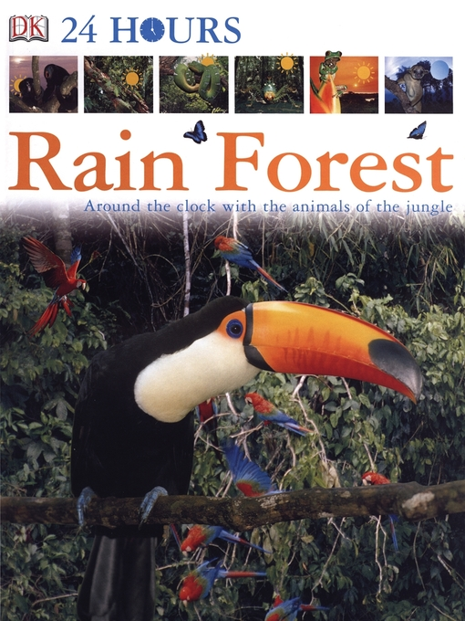 Title details for Rain Forest by DK Publishing - Wait list