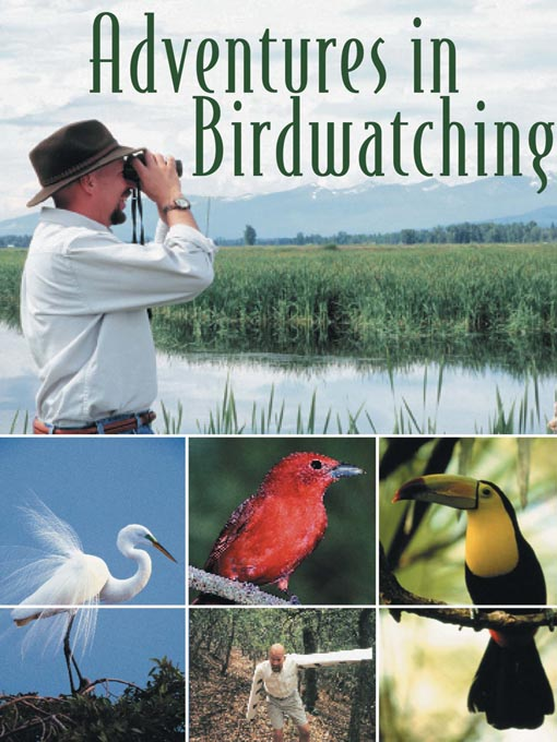 Title details for Adventures in Birdwatching by Incandescent Entertainment - Available