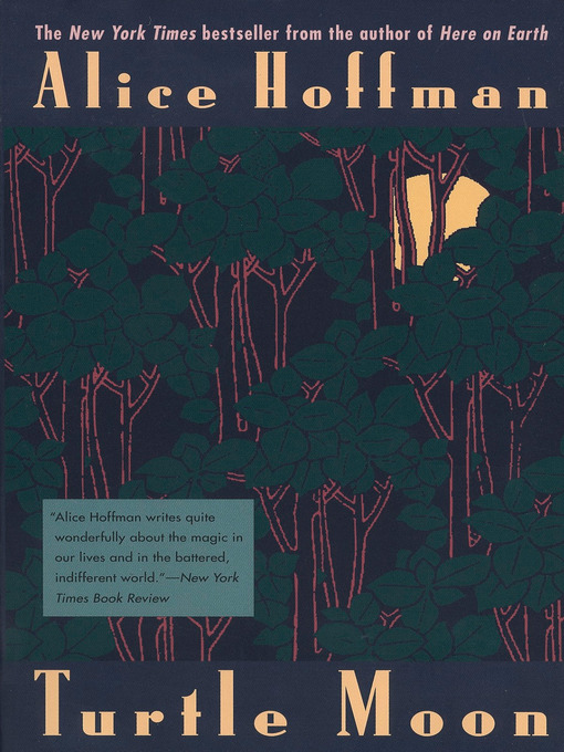 Title details for Turtle Moon by Alice Hoffman - Available